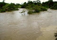 flood, event, river,