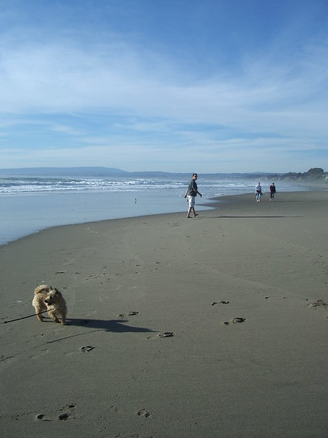 A Day on the Beach in California