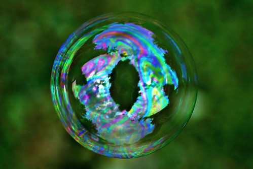 cats macro eye grass yard photography soap rainbow sony bubbles blow bubble series 300 alpha dslr 2008 catseye a300 α dslra300 α300 dslra300k αlpha dslrα300 dslrα300k