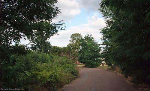 Chemin goudronné du bois de Vincennes