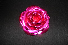 Rose Paper Rose 1 Photos 047
