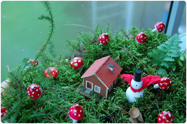 Mushroom Land by iHanna