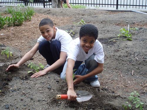 cheeful planters