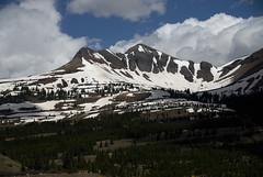Colorado to California