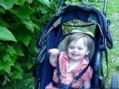 high on wild thimbleberries   DSC01403