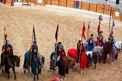 animal sports, people, tradition, middle ages,