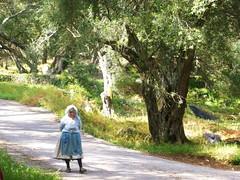 Unterwegs auf Korfu