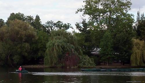 Ramer sur le lac du bois de Vincennes...