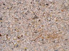 asphalt(0.0), flower(0.0), stone wall(0.0), leaf(0.0), soil(0.0), sand(0.0), grass(0.0), granite(0.0), road surface(0.0), flooring(0.0), geology(1.0), rock(1.0), gravel(1.0),