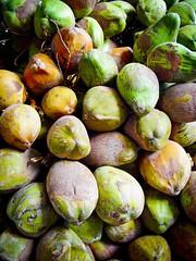 Coconuts galore.
