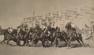 starting gate at horse race