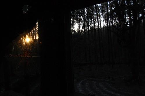 trip vacation georgia hostileintheforest