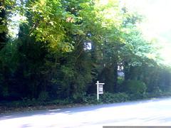 home for sale in lake oswego   DSC01404