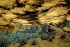 Infrared HDR Garden of the Gods Colorado