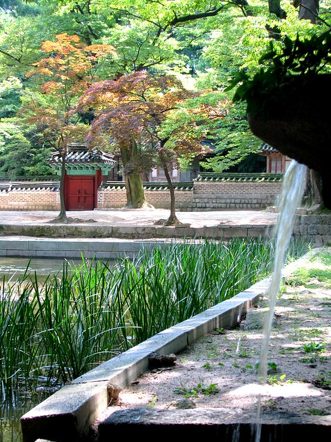 Un jardin zen flickr photo sharing for Un jardin zen