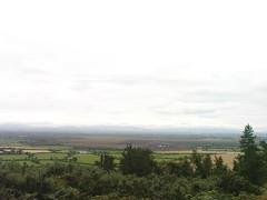 Hill of Allen