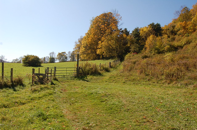 A hiking trail in Tyringham Cobble.