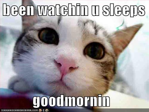 been watchin you sleeps
