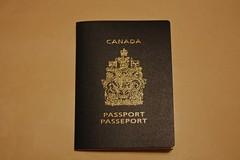 label(0.0), brand(0.0), text(1.0), passport(1.0), identity document(1.0), document(1.0),