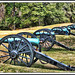 Cannons by bluebird218