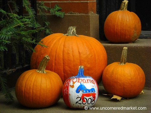 Election Day Pumpkins - Brooklyn, New York