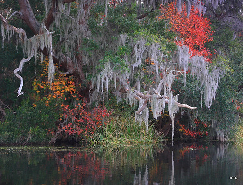 autumn trees usa water sunrise canon reflections landscape kayak fallcolor lakes southcarolina goosecreek blueribbonwinner tamron1750 40d anawesomeshot canon40d