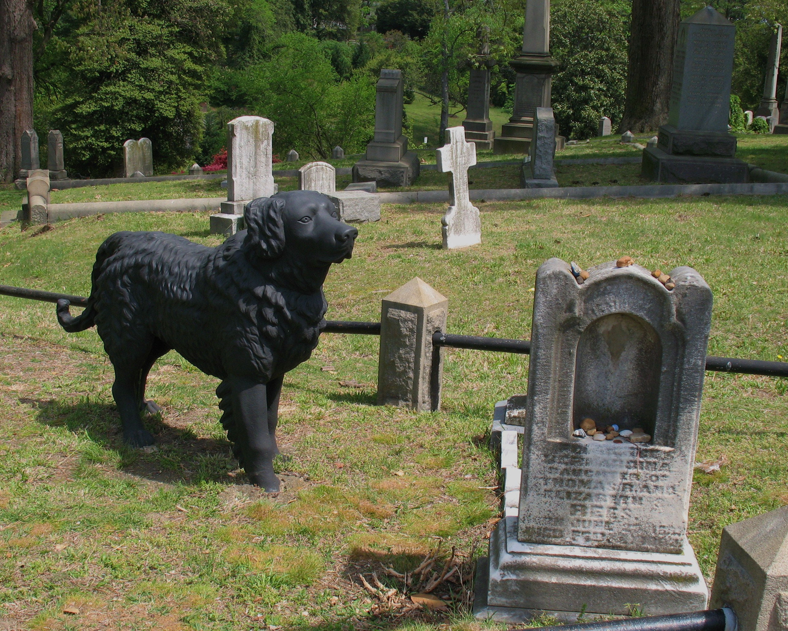Hollywood Cemetery Dog  Black Cast Iron Dog Standing -1677