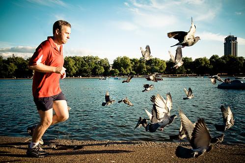 Runner @ Hyde Park