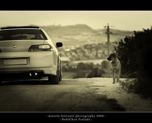 Honda Prelude - WANTED