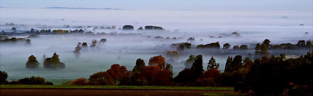 Ground Fog in the Vale
