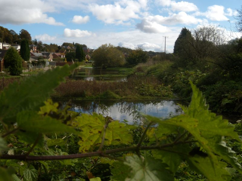 Disused watercress beds Whitchurch to Overton