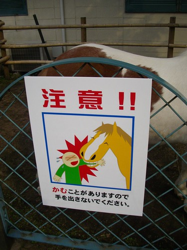 Pony Warning, Negishi Horse Racing Memorial Park