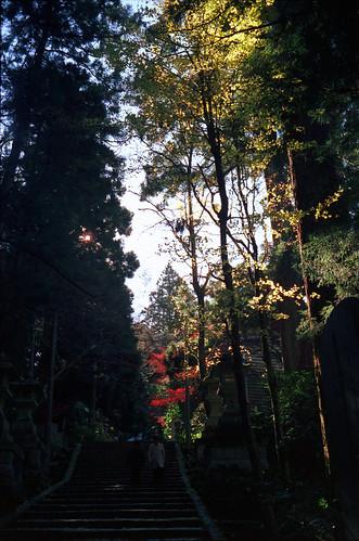 Daiyuzan Saijyoji by Lono_Luno