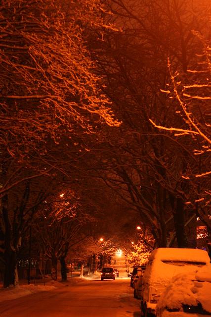 MORE SNOW!!!