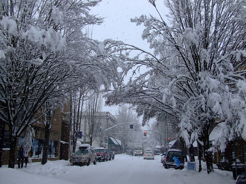 city trees winter snow storm streets cold ice beauty oregon cool pretty awesome scenic mcminnville mcminnvilleoregon 97128