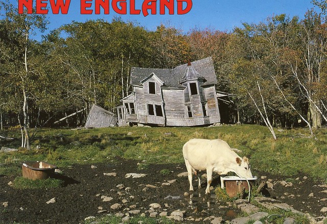 New England old farmhouse with cow Explore rubycantfail s …