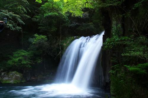 河津七滝 - kawazu waterfall