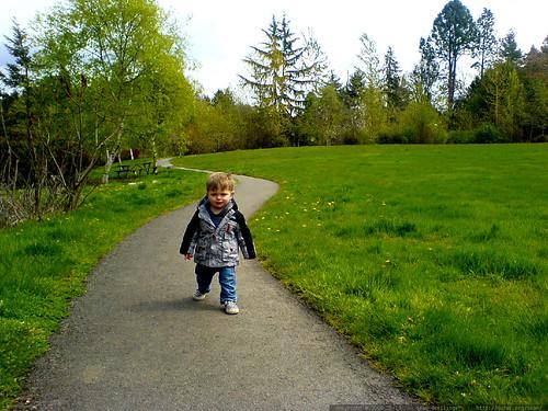 sequoia walking in freepons park   DSC00629