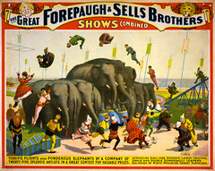 Terrific flights over ponderous elephants, poster for Forepaugh & Sells Brothers, ca. 1899