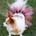 Dog Tutu Pink-Brown