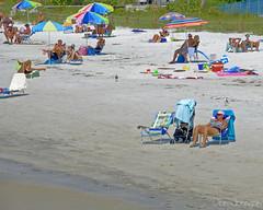 Ft Myers Beach_3451