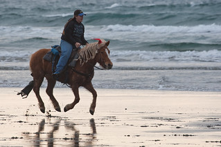 Try horse riding and swimming at Labadi Pleasure Beach near Accra  - Things to do in Accra