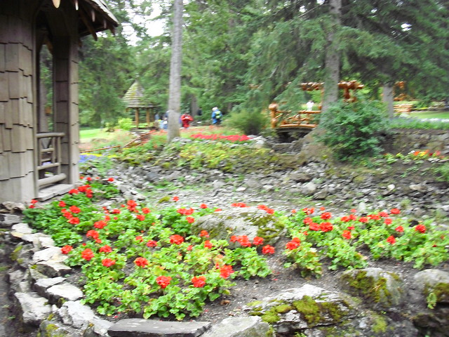 Red flowers over the rock bed the gardens behind the for Red rock for flower beds