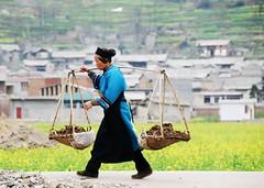 GuiZhou 貴州 2008 2300+views
