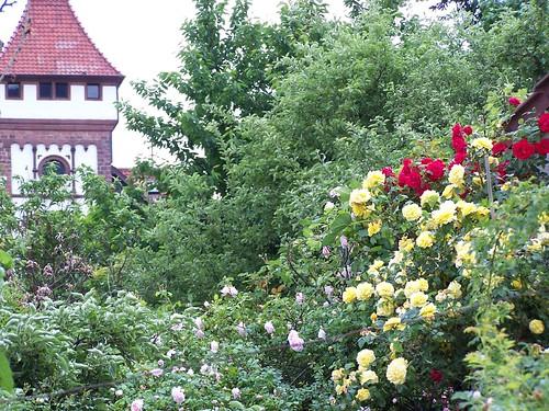 Oberdorf 76835 weyher for Villas julie