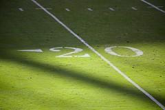 The 20 Yard Line