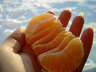 ~ a handful of orange happiness ~