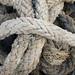 Small photo of Rope Pile