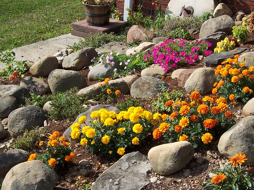 Il giardino roccioso - Giardino roccioso foto ...