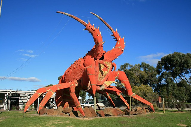 Kingston South East Australia  city photos gallery : Giant Southern Rock Lobster Kingston SA | Flickr Photo Sharing!